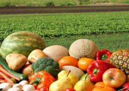 alimentos-ecológicos1-720x340